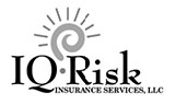 IQ Risk Logo